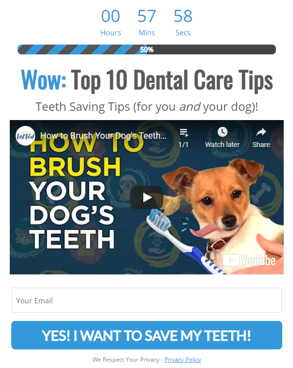 discoverdentists dental care tips